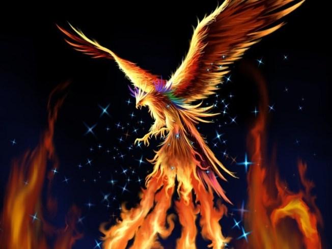 phoenix-fantasy-17884366-1024-768